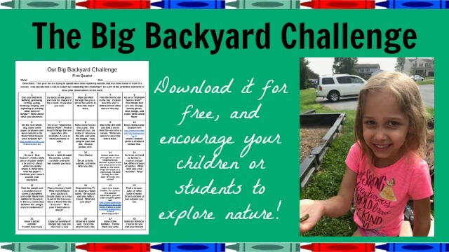 The Big Backyard Challenge