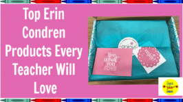 Are you looking for fun teaching supplies that will keep you organized? Check out these Erin Condren products every teacher will love.