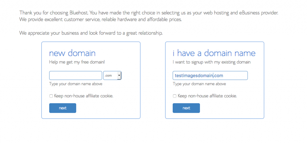 Choose a domain for your self-hosted WordPress teacher blog.