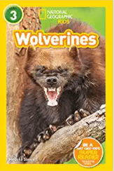 Use National Geographic Readers: Wolverines to teach asking and answering questions in informational texts.