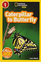 Caterpillar to Butterfly to teach text structures