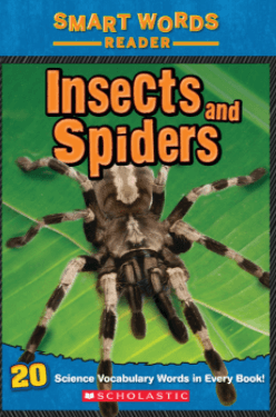 Insects and Spiders for teaching text features